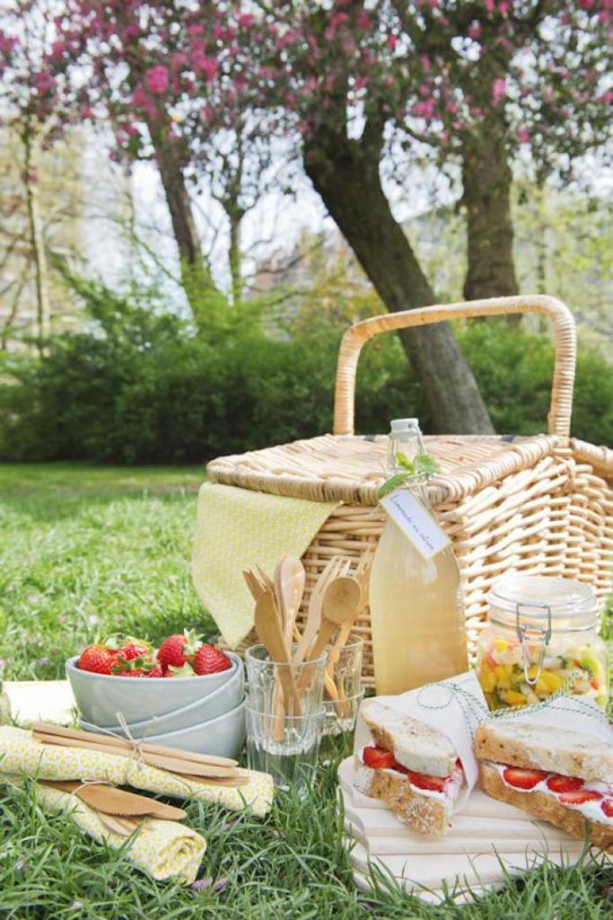 ontbijt-picknick-staycation-thuis-op-vakantie-tuintrend-styling-bron-flaironline