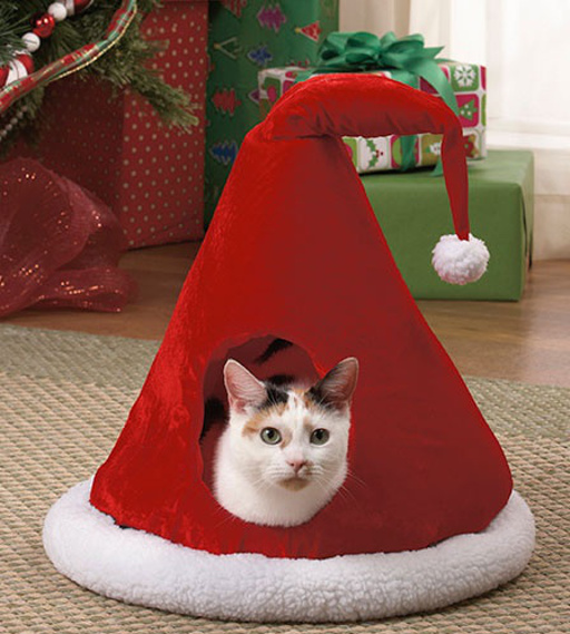 The Aim Store: kattenkussen kerst.