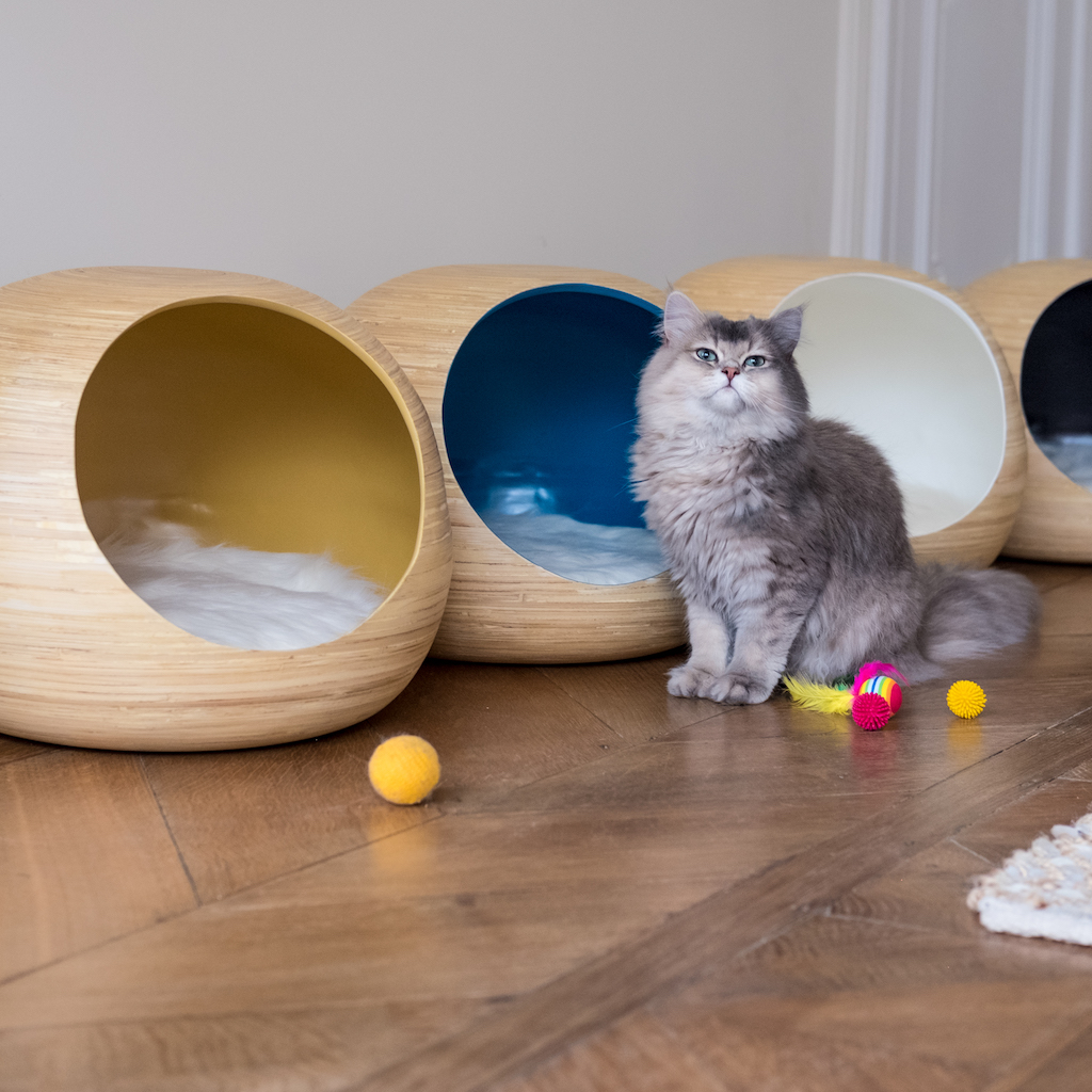 Kattenmand_Dandy_Ball/Dandy_Ball3.jpg
